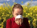 alergi.jpg