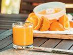 ilustrasi-jeruk-sebagai-sumber-vitamin-c-alami.jpg