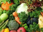 ilustrasi-sayuran-hijau-agar-kadar-asam-urat-terkontrol.jpg