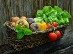 ilustrasi-sayuran-segar-2.jpg