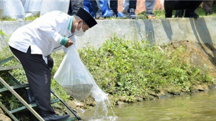 Wakil Gubernur Jawa Barat Uu Ruzhanul Ulum saat menebar seribu benih ikan di Sungai Surakatiga dalam kunjungan ke Pondok Pesantren Syamsul Huda, di Kelurahan Windusengkahan, Kecamatan Kuningan, Kabupaten Kuningan, Sabtu (25/9/2021).