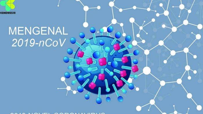 2019-novel-coronavirus-2019-ncov.jpg