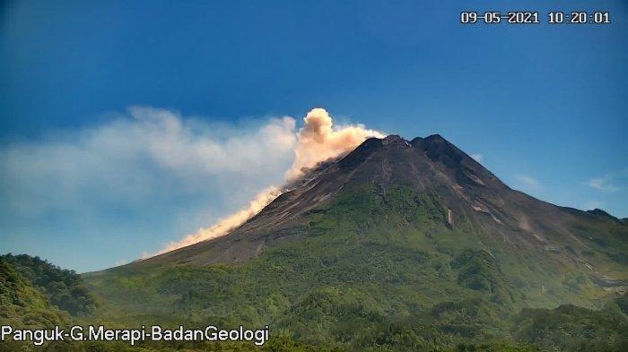 Pagi Tadi, Terjadi 39 Gempa Guguran di Gunung Merapi Yogyakarta, Ada Luncuran Lava Pijar 700 Meter