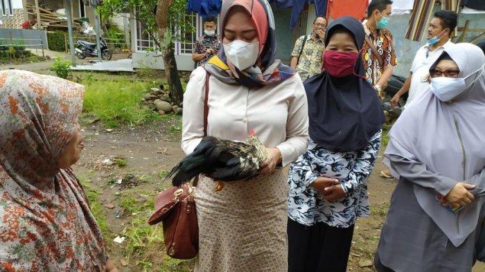 Gara-gara Pakai Ayam Hidup dalam Bansos, BPK RI Pun Turun Langsung Evaluasi ke Cianjur