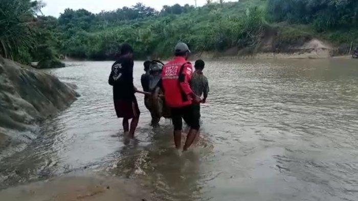 Menantang Maut, Warga Harus Gotong Motor, Seberangi Sungai Karangbolong Sukabumi, Jembatannya Rusak