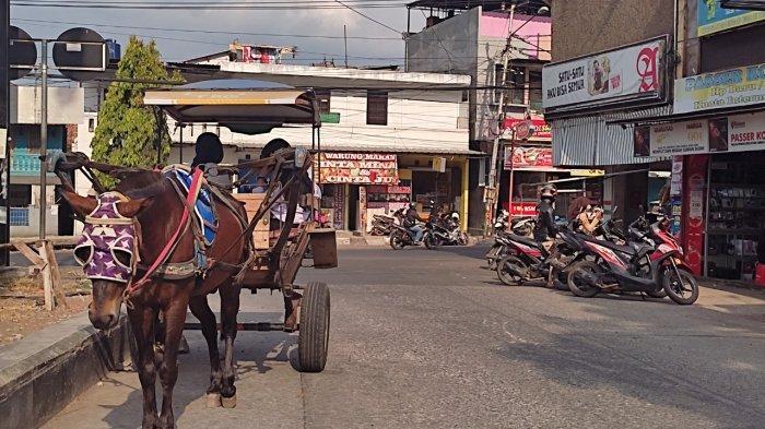 Cegah Kemacetan, Dishub Garut Rencanakan Delman Beroperasi di Jalan Menuju Tempat Wisata