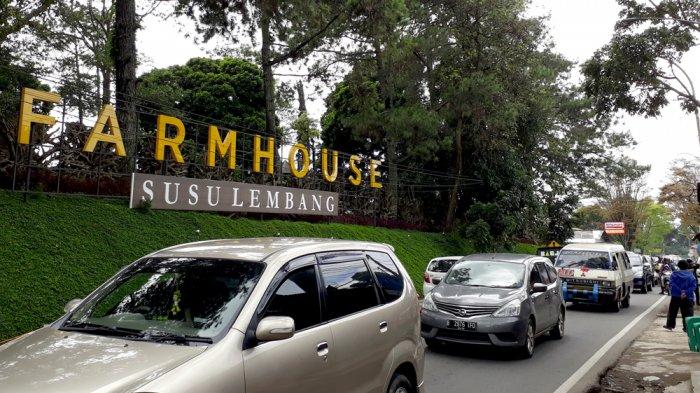 Gunung Tangkuban Perahu Meletus, Farmhouse dan Floating Market Lembang Tetap Buka
