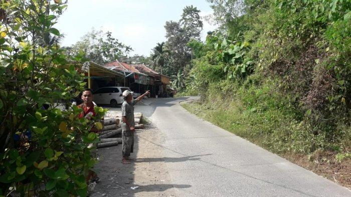 Heboh Babi Hutan Masuk ke Permukiman Warga Desa Sindangsari Cianjur, Diduga Kehausan dan Kelaparan