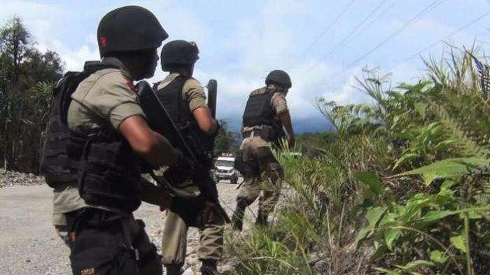 Baku Tembak Terjadi di Kabupaten Puncak Papua, 1 Brimob Gugur, 5 Anggota KKB Tewas