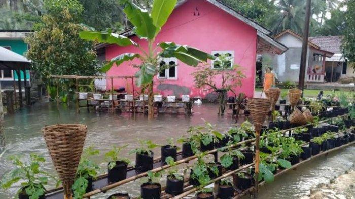 Diguyur Hujan Semalaman, 75 Rumah Warga di Pangandaran Terisolasi Banjir, 1 Rumah Tertimpa Pohon