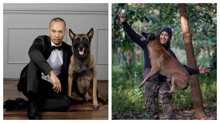 Harga Anjing Malinois Belgian Seperti Milik Bima Aryo Bisa Puluhan Juta, Ini yang Membuatnya Mahal