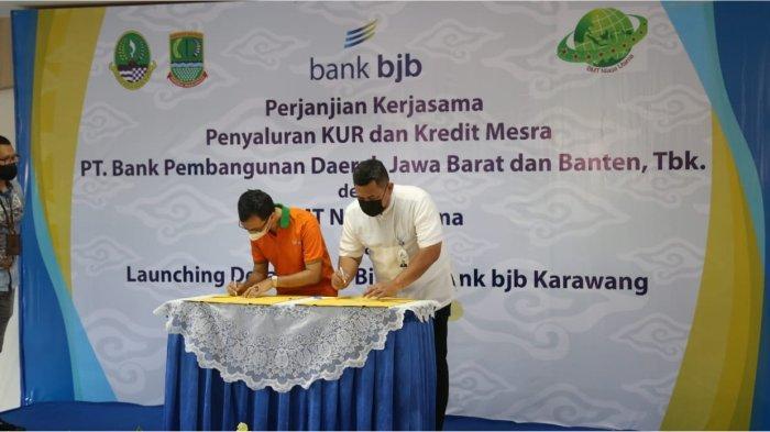 Bank bjb Cabang Karawang Salurkan KUR Pertanian dan Kredit Mesra  untuk Petani Desa Parakan Cikampek