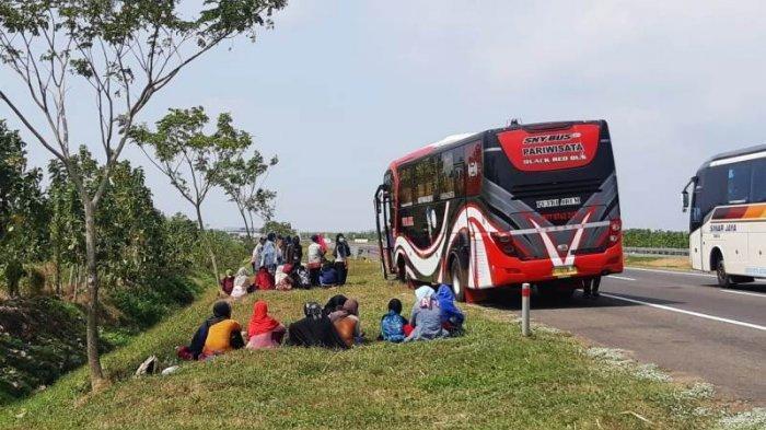 Bus-bus Tak Bisa Masuk Tegal yang Di-Lockdown, Penumpang Diturunkan di Tepi Jalan Tol