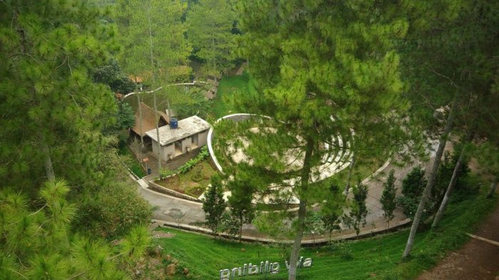 Menikmati Wahana Permainan di Dago Dream Park di Tengah Hutan Pinus yang Menyegarkan