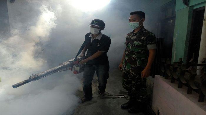 Waspada, Salah Cara Melakukan Fogging Bikin Nyamuk Tambah Kebal