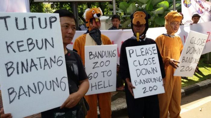 BREAKING NEWS FOTO: Massa Desak Wali Kota Bandung Tutup Kebun Binatang Bandung