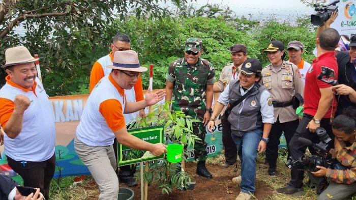Walhi Jabar Dukung Pemprov Soal Pemulihan RTH Termasuk Tanam Pohon bagi yang Mau Nikah dan Cerai
