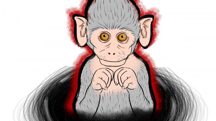Dongeng Cinta Sepasang Monyet
