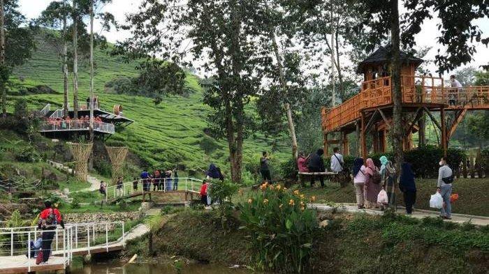 Dibuka Untuk Umum, Kawasan Wisata di Pacira Kabupaten Bandung Langsung Diserbu Pengunjung
