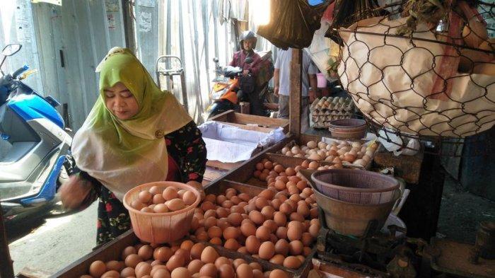 Harga Telur Ayam Makin Tersungkur Tinggal Segini, Para Peternak Merugi Hingga Rp 260 Juta per Hari