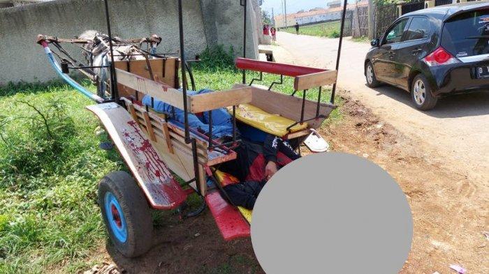 Polisi Amankan Golok, Senjata untuk Membunuh Pria yang Ditemukan Tewas Terkapar di Atas Delman