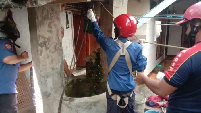 Pag-pagi Petugas Damkar Ciamis Sudah Evakuasi Kucing Persiayang Kecebur Sumur