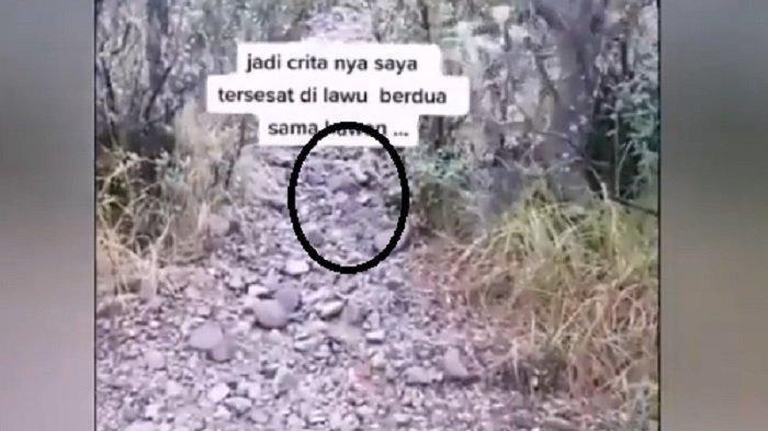 Viral Kisah Pendaki Tersesat di Gunung Lawu, Selamat Setelah Dituntun Jalak Lawu, Ini Penjelasannya