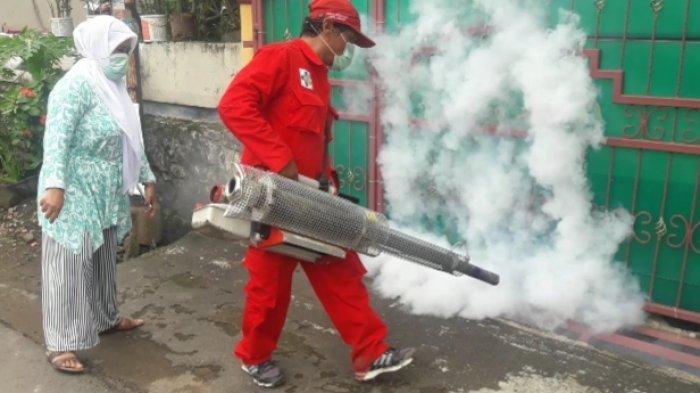Asap Fogging Untuk Berantas Nyamuk DBD Dinilai Berbahaya, Kadinkes Cimahi Sarankan Lakukan PSN