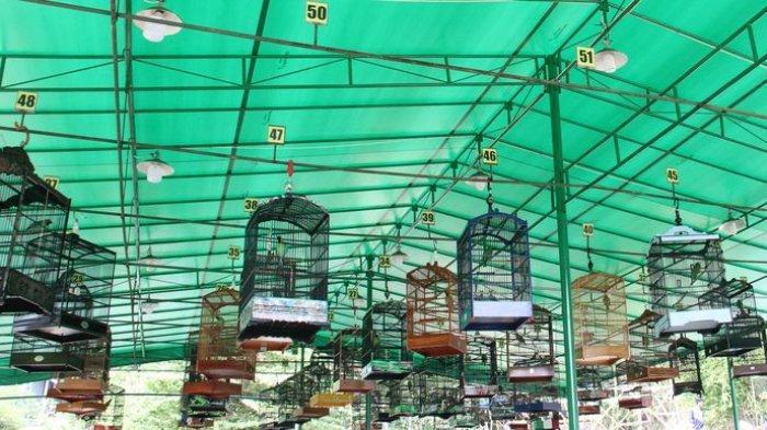 Mereka ikut gantang (kontes burung) di Taman Bukit 21 Kompleks Bukit Mekar Indah RW021, Cimekar, Cileunyi, Kabupaten Bandung, Minggu (22/9).