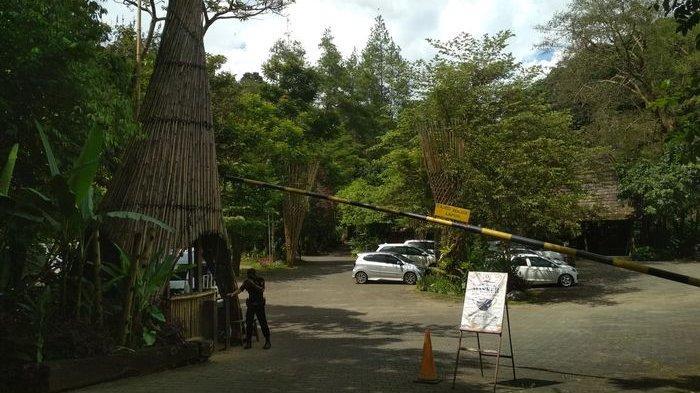 Rasakan Sensasi Berbeda Menginap di Lembang, Imah Seniman Tawarkan Konsep Tidur di Tengah Hutan