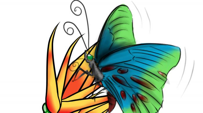Hari Ketika Menjadi Kupu-kupu
