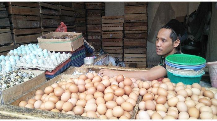 Peternak Curhat Saat Bertemu Presiden Jokowi, Harga Telur dan Ayam Pedaging Tak Kunjung Membaik