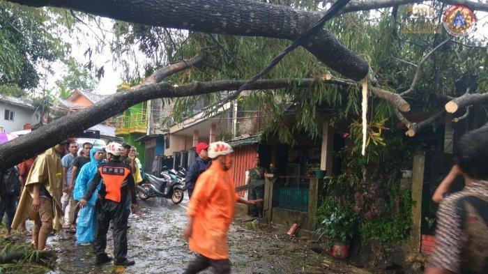 Hujan Deras dan Angin Kencang di Ciamis Akibatkan Longsor dan Sejumlah Rumah Tertimpa Pohon