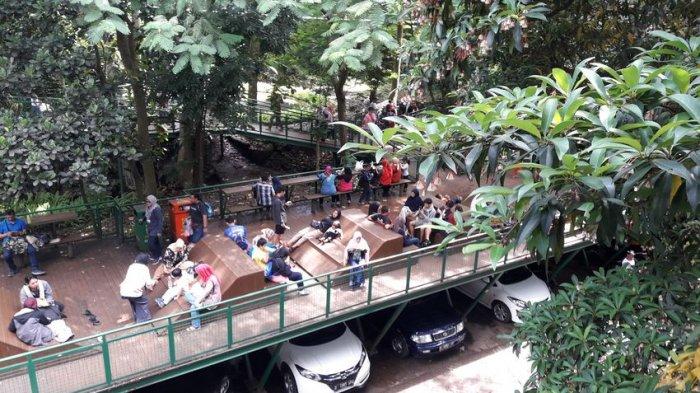 Suasana Forest Walk Hutan Kota Babakan Siliwangi, Kota Bandung, Minggu (11/3/2018)