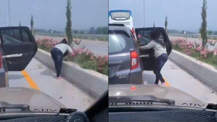 Viral Ibu-ibu Turun dari Mobil dan Curi Bunga di Median Jalan Tol, Identitas Pemilik Mobil Terkuak