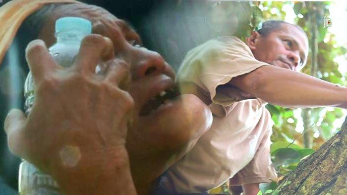 Bertengkar dan Takut 'Dibunuh' Tetangganya, Pria Ini Pilih Hidup di Atas Pohon Kelapa Bertahun-tahun