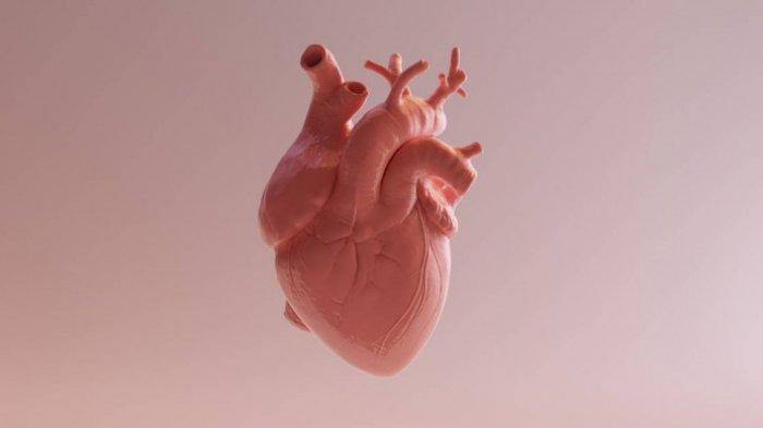 Gejala Penyakit Jantung Bisa Dideteksi Lewat Kulit dan Kuku, Ini Tanda-tandanya