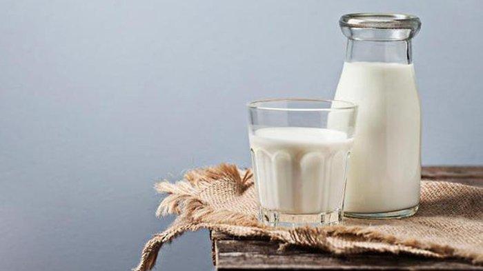 ILUSTRASI manfaat susu
