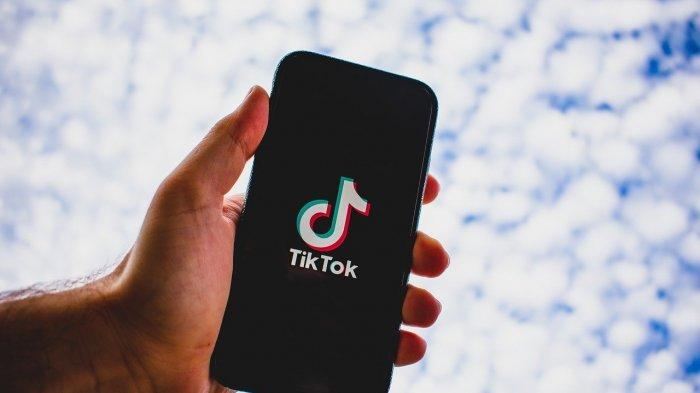 Ilustrasi media sosial TikTok. (Pixabay)