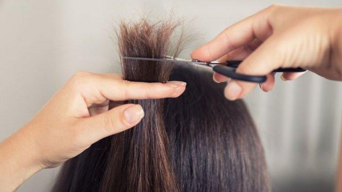 Zat Berbahaya untuk Rambut, Mitos atau Fakta Wanita Hamil Tidak Boleh Potong Rambut, Ini Faktanya