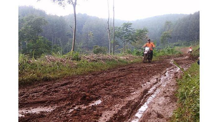 Jalan Penghubung Antara KBB dan Kabupaten Bandung Ambles dan Tertutup Longsor