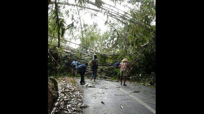 Jalan Tertimbun Rumpun Pohon Bambu yang Runtuh, Jalur Cimaragas – Cidolog Sempat Terputus