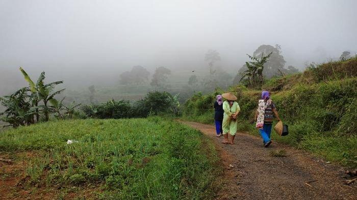Selain Toyota Avanza Tersesat Ini Cerita Mistis di Hutan Gunung Putri, Warga Berpesan Ini Jika Lewat