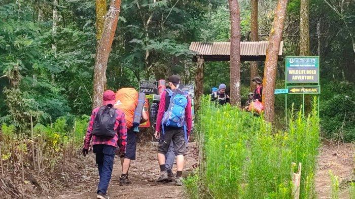 Libur Lebaran, Jalur Pendakian Apuy Majalengka Diminati Pendaki, Pilih Naik Gunung Saat Liburan