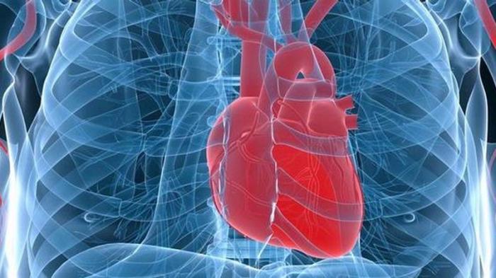 Ashraf Sinclair Suami BCL Meninggal Karena Serangan Jantung, Ini Kebiasaan Baik Kuatkan Otot Jantung