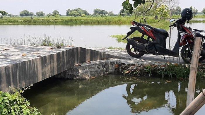 VIRAL di Media Sosial Jembatan 4 Meter Habiskan Anggaran Rp 200 Juta, Kades: Pakai Paku Bumi