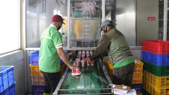 Karyawan mengemas susu di Pabrik Susu KPBS di Pangalengan.