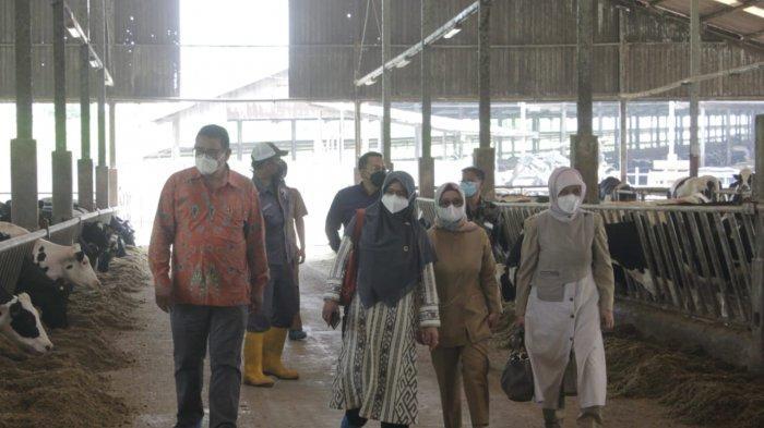 DPRD Jabar: Perusahaan Produsen Susu di Bandung Jangan Sampai Kotori Lingkungan