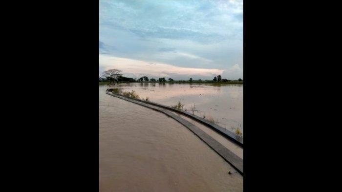 Warga Indramayu Mohon Waspada, Debit Air Sungai Cimanuk Kembali Meningkat Signifikan Pagi Ini