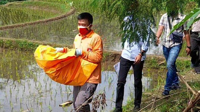 Bidan dan Dukun Beranak Dimintai Keterangan, untuk Ungkap Pelaku Buang Bayi di Cisayong Tasikmalaya